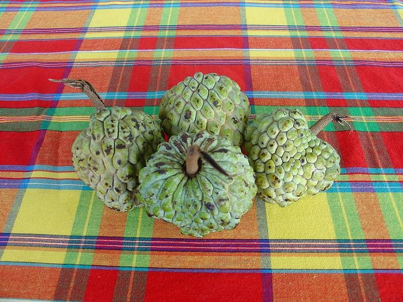 pomme canelle tipical fruit of martinique