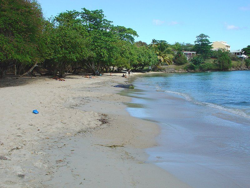Anse Mabouyas beacha Ste Luce in Martinique