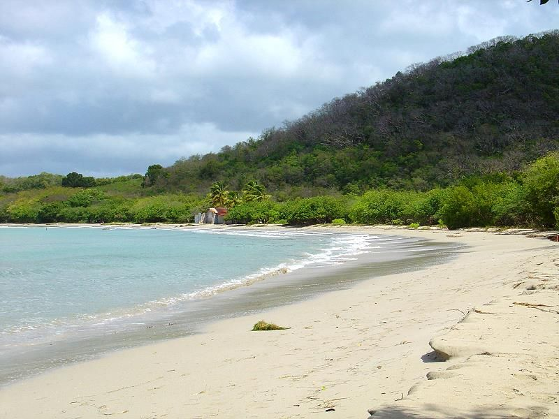 Anse Meuniere beach o Moustique - Sainte Anne - Martinique