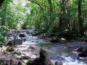 trekking_north_martinique_002