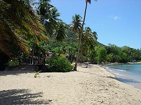 beach_anse_figuier_martinique