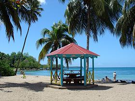 beach_anse_figuier_martinique_001