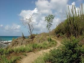 south_beach_martinique_trekking_008