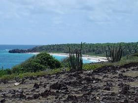 south_beach_martinique_trekking_029