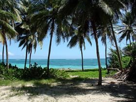 south_beach_martinique_trekking_030