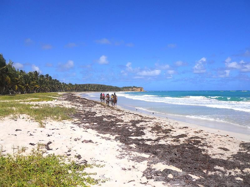 Grand Macabou beach In southern Martinique